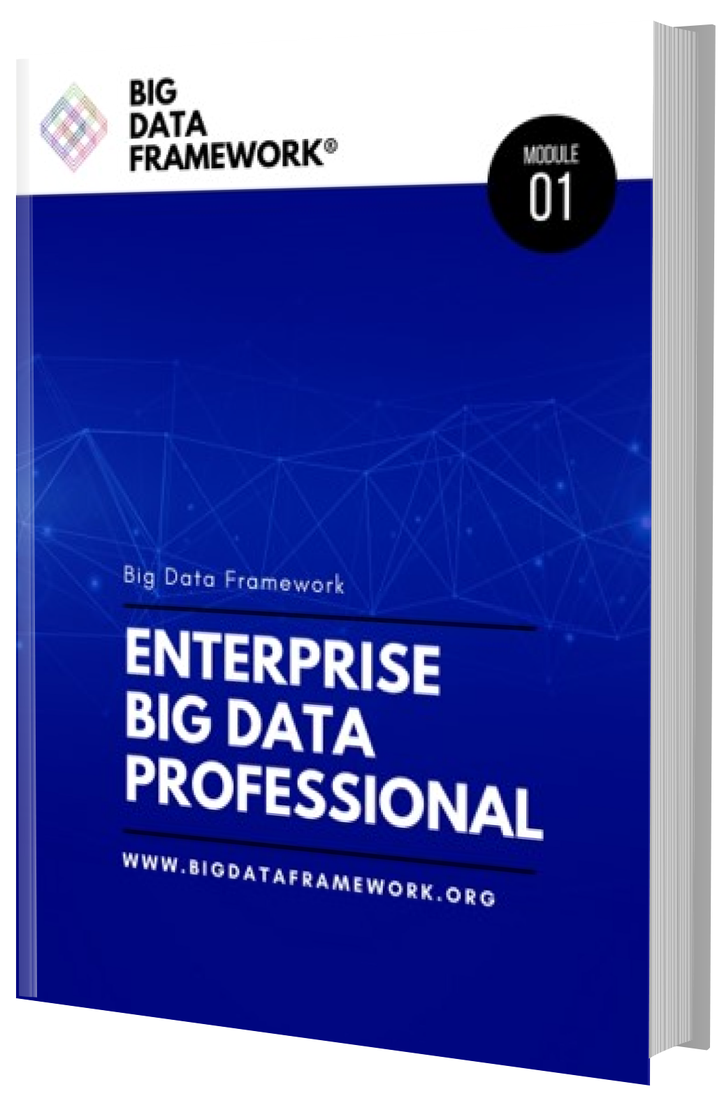 data enterprise professional guide certification framework email phone